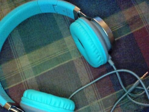 headphoneswmic